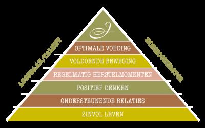 Julevita_werkwijze_piramide (002)
